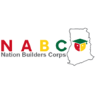 Nation Builders Corps (NaBCo); What Is It?