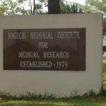 Noguchi Tests Herbal Medicines For COVID-19 Treatment
